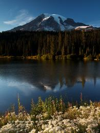 Mount Rainier , Washington